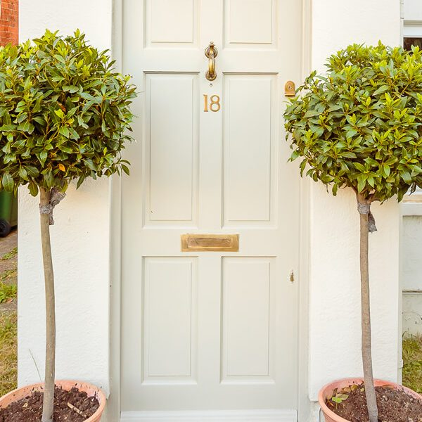 The Surrey composite door company